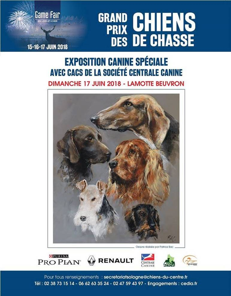 centrale canine vaucluse